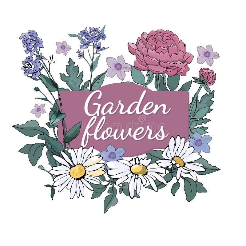 Ogrodowy flowers_3 royalty ilustracja