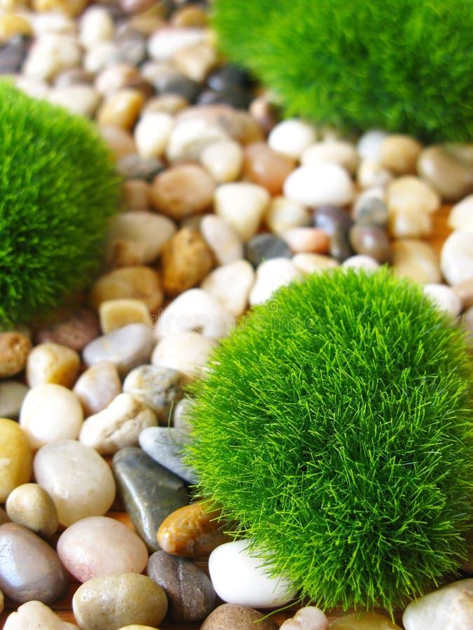 ogrodowy kamień zdjęcie royalty free