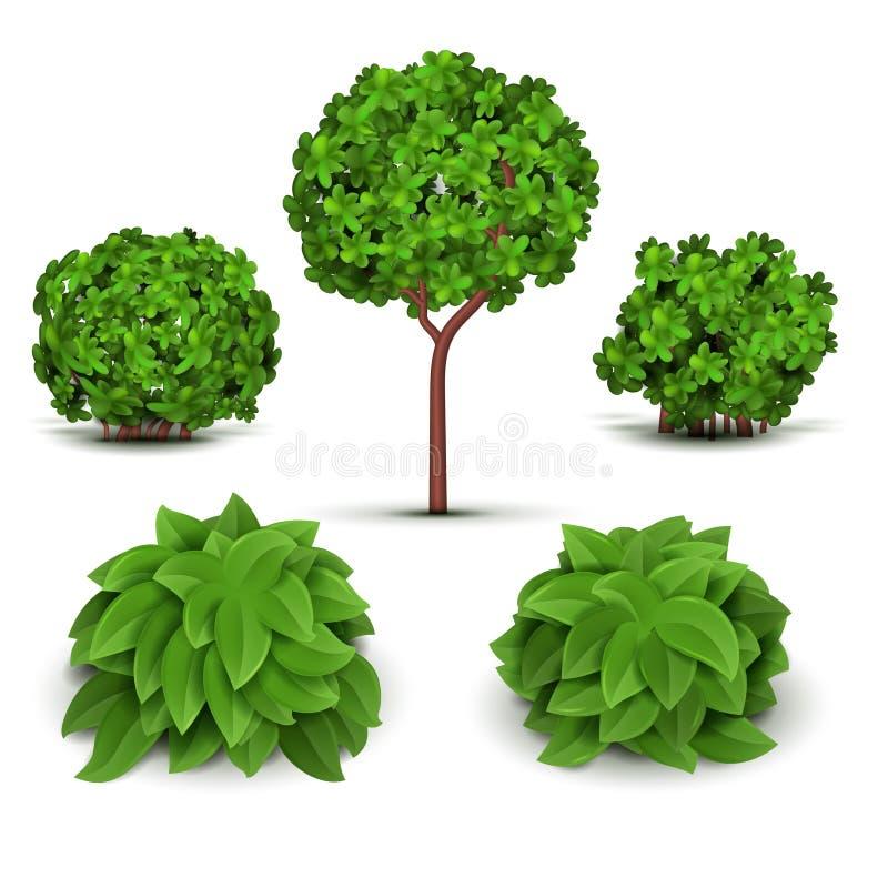Ogrodowy krzak z zielenią opuszcza wektoru set royalty ilustracja