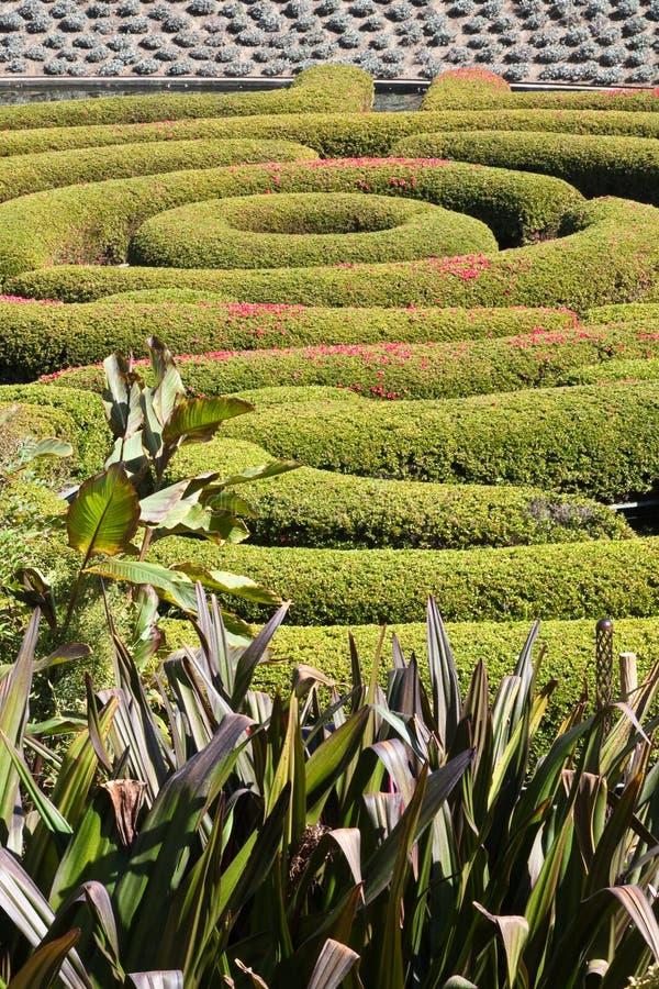 ogrodowy labirynt obrazy stock