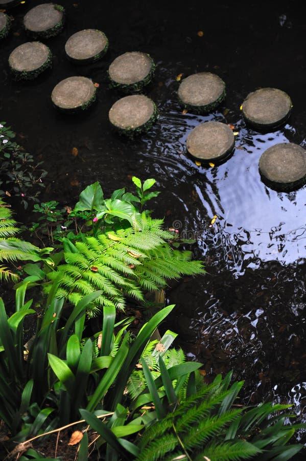 ogrodowy Madeira monte pałac tropikalny zdjęcia royalty free