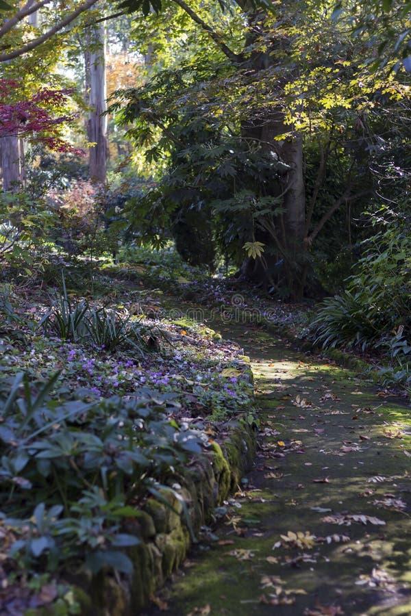 ogrodowy ogrodowa ścieżka obrazy stock