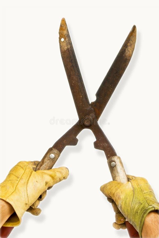 ogrodowy rękawiczek strzyżeń kolor żółty zdjęcia stock