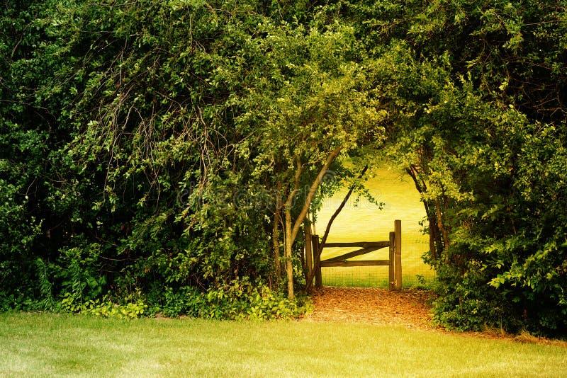 ogrodowy sekret fotografia stock