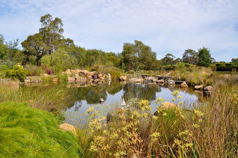 Ogrodowy staw przy Amaze'n Margaret rzeką obrazy stock
