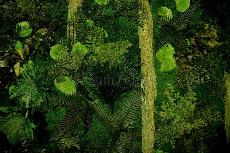 ogrodowy vertical fotografia stock