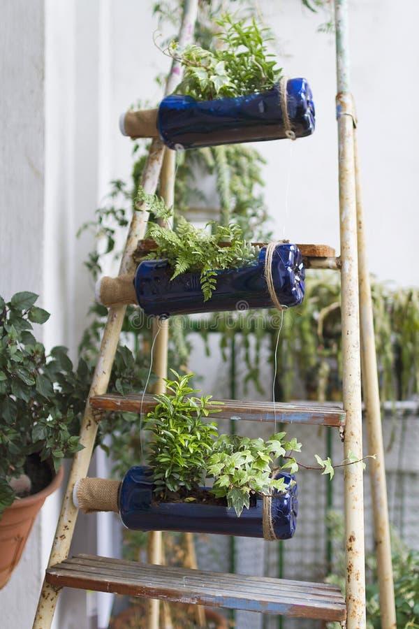 ogrodowy vertical zdjęcia stock
