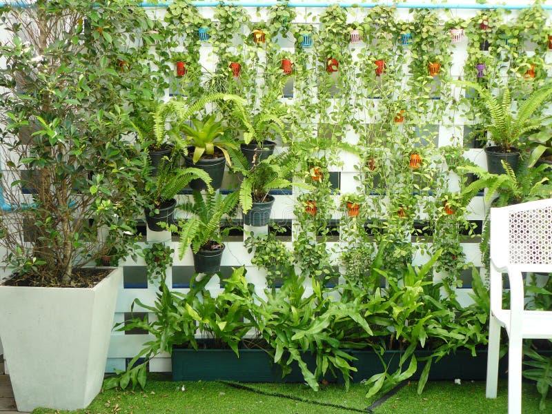 ogrodowy vertical obraz stock