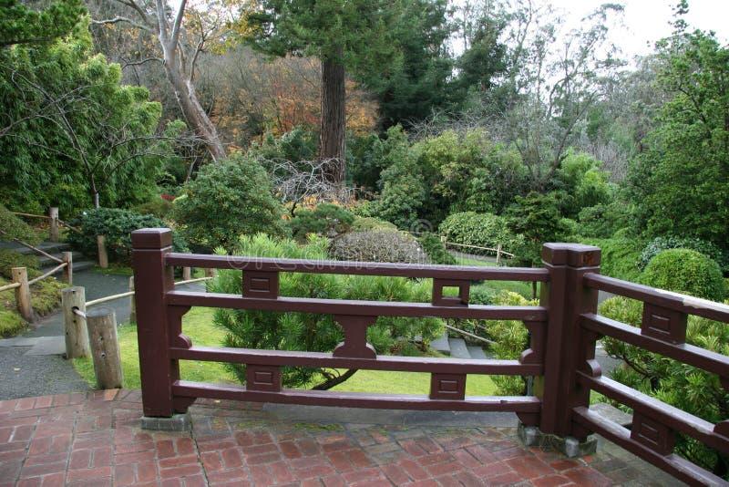 ogrody japońskiej z widokiem na herbatę. obrazy royalty free