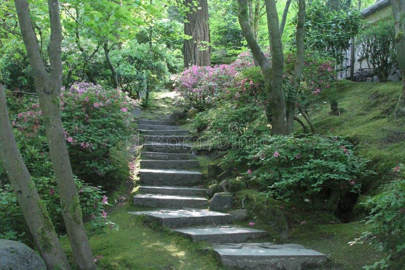 ogrody po japońsku Portland obrazy royalty free