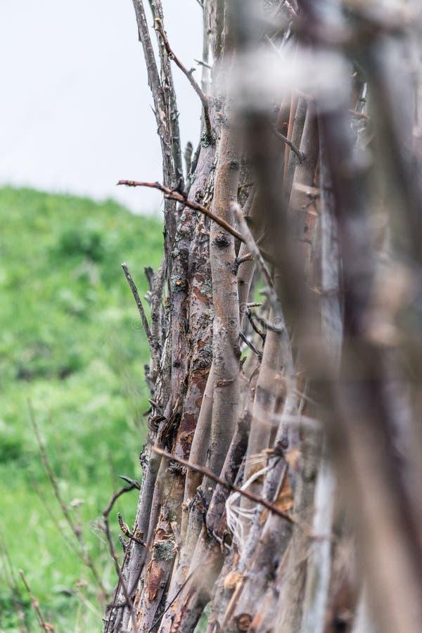 Ogrodzenie od konarów Natura w Tekeli zdjęcia royalty free