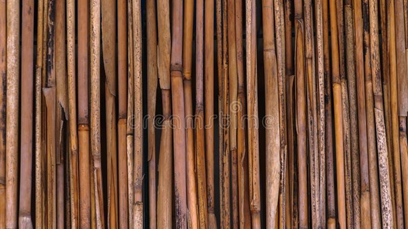 Ogrodzenie s?oma w tropikalnym stylu zdjęcie royalty free