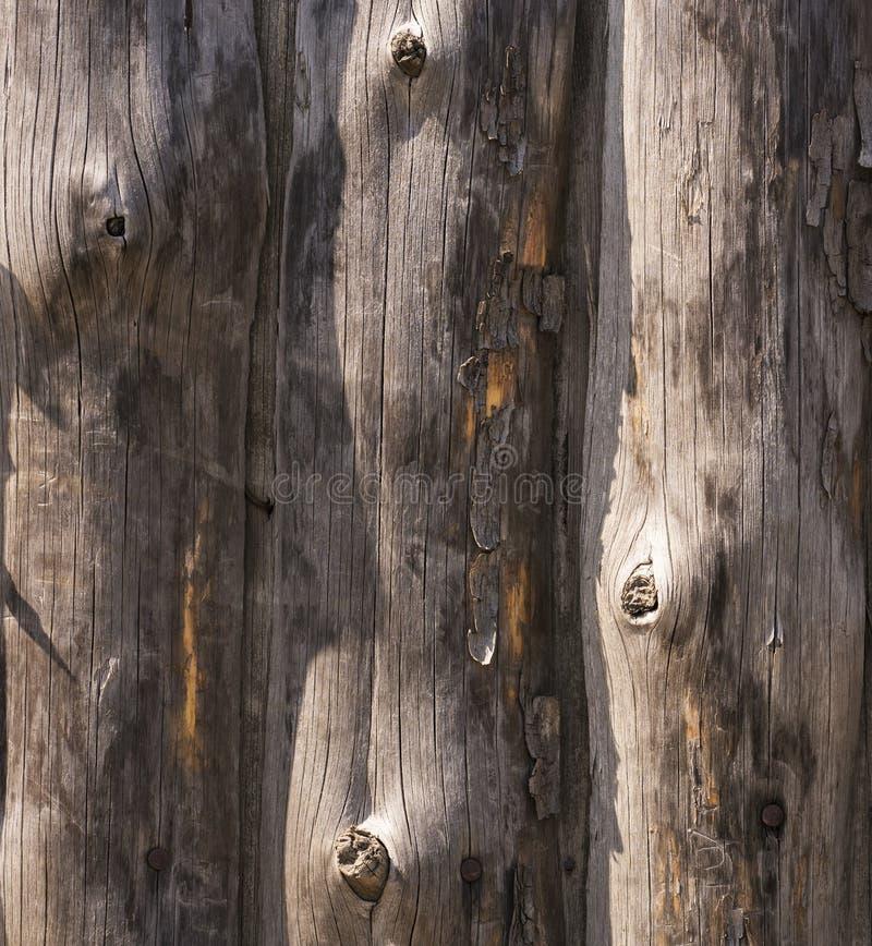 Ogrodzenie stare deski z gwoździami i zniszczonym drewnem zdjęcie stock