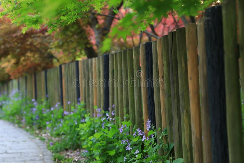 Ogrodzenie w wiosna spadku zdjęcie stock