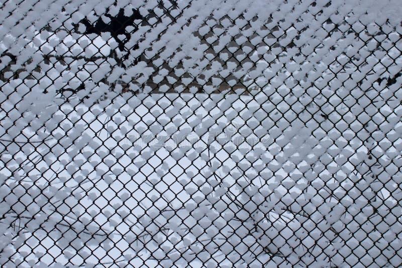 Ogrodzenie w zimie zdjęcie royalty free