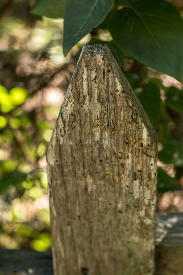 Ogrodzenie wokoło zielonego ogródu zdjęcia stock