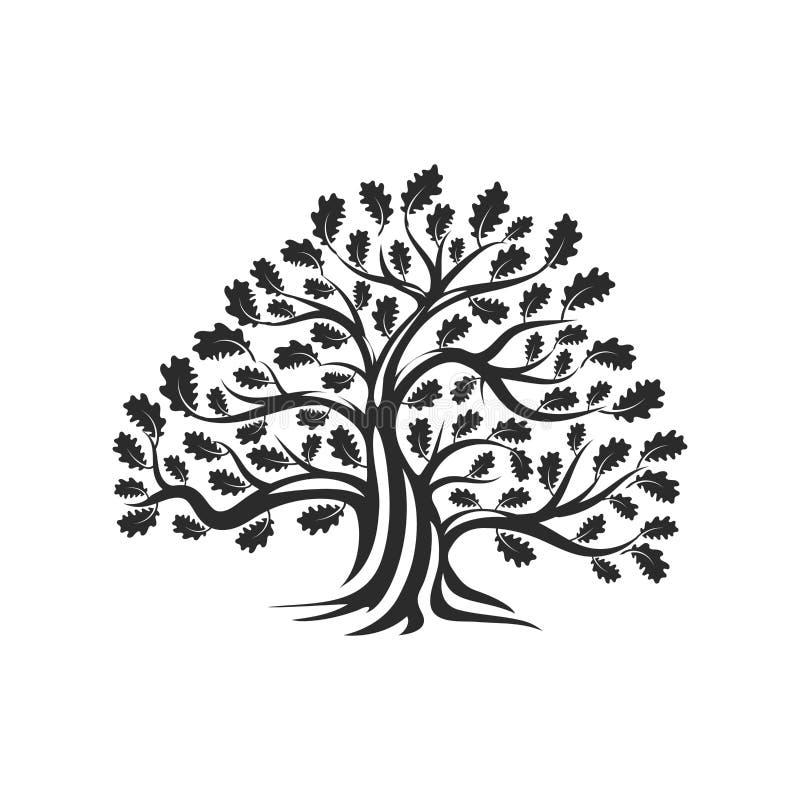 Ogromna i święta dębowego drzewa sylwetki loga odznaka odizolowywająca na białym tle royalty ilustracja