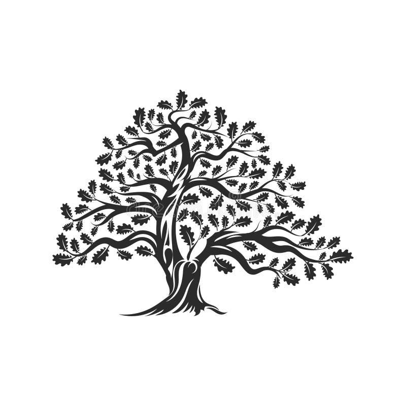Ogromna i święta dębowego drzewa sylwetki loga odznaka odizolowywająca na białym tle ilustracji