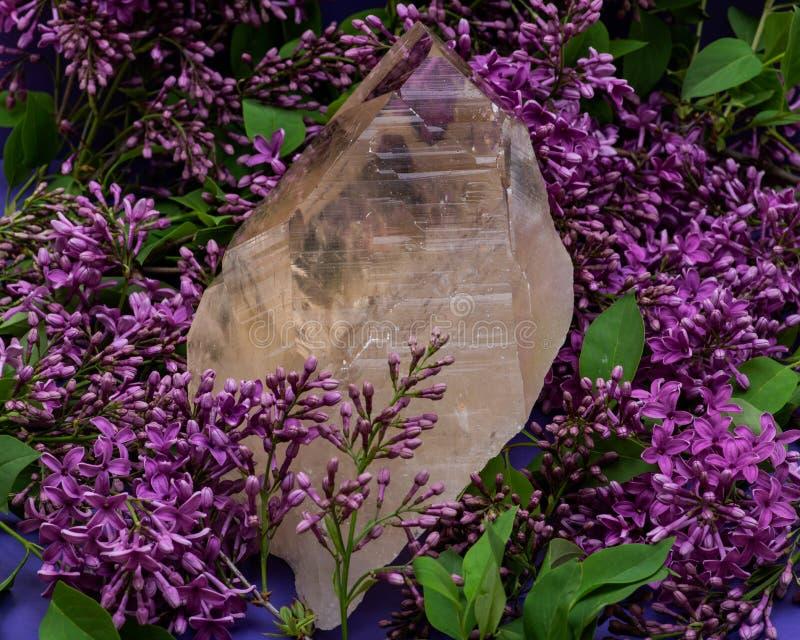 Ogromna naturalna Citrine Katedralna kwarc od Brazylia otacza? purpurowym lilym kwiatem zdjęcia stock