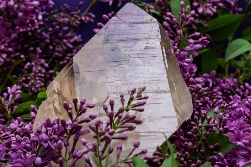 Ogromna naturalna Citrine Katedralna kwarc od Brazylia otacza? purpurowym lilym kwiatem obraz royalty free