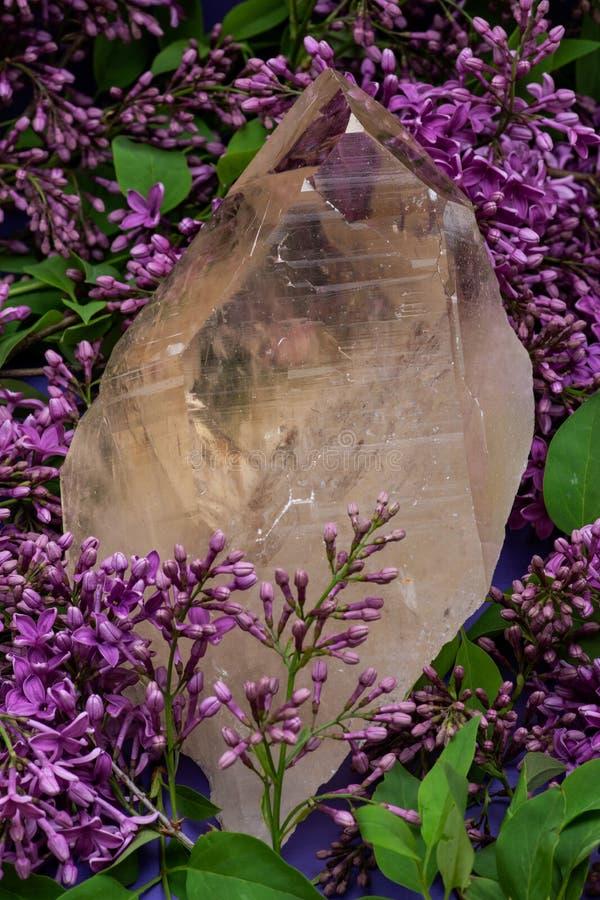 Ogromna naturalna Citrine Katedralna kwarc od Brazylia otacza? purpurowym lilym kwiatem zdjęcia royalty free
