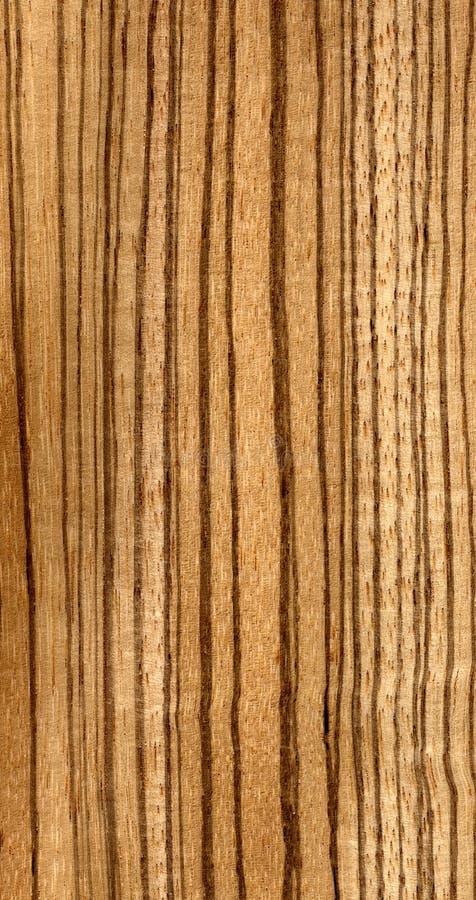 ogromna tekstury zebra drewna zdjęcie stock
