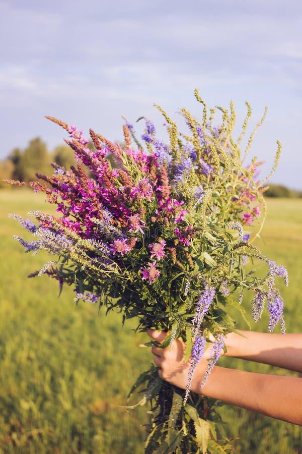 Ogromny bukiet fragrant wildflowers w rękach dziewczyna obrazy royalty free