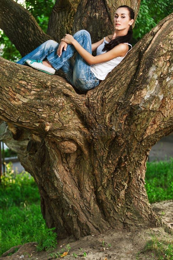 ogromny i siedzi drzewnej kobiety zdjęcia stock