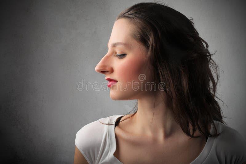 ogromny nos zdjęcie stock
