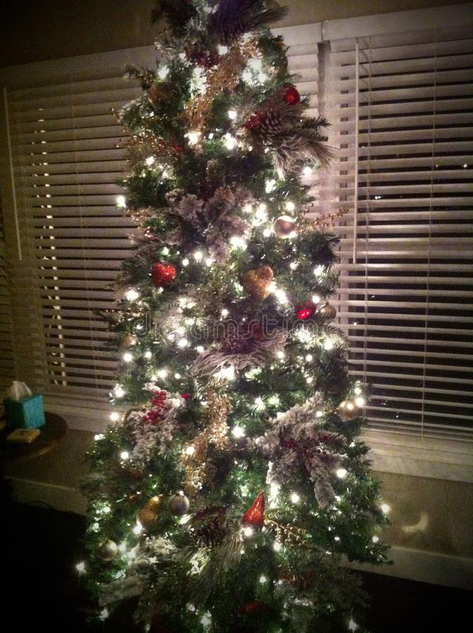 Oh Kerstboom stock afbeeldingen