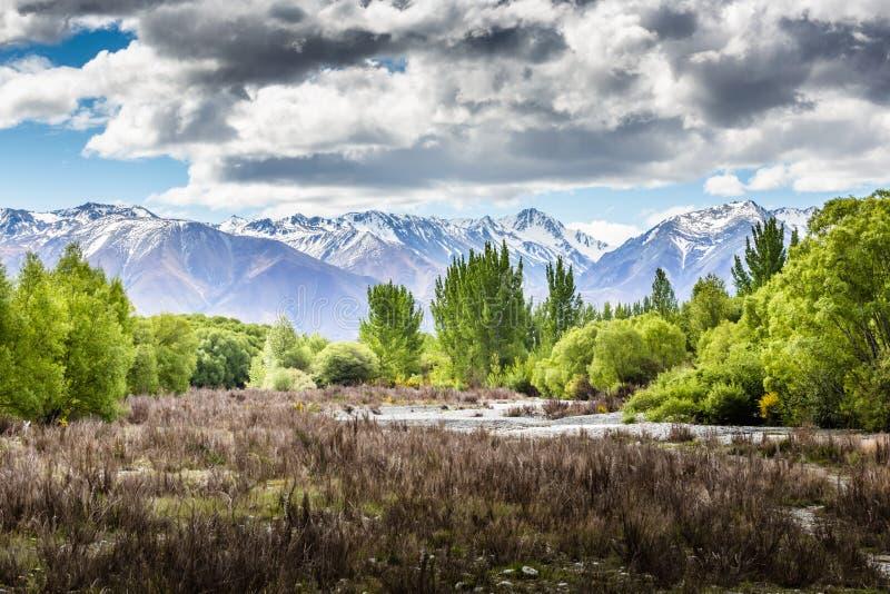 Ohau dalsikt - Nya Zeeland royaltyfria bilder