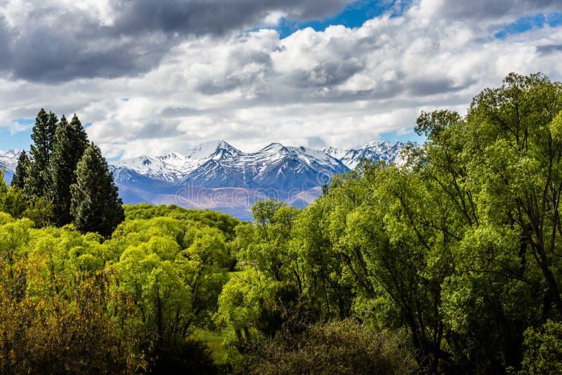 Ohau Dolinny widok - Nowa Zelandia obrazy stock