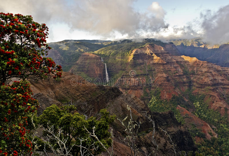 `Ohi`a and Waipo`o Falls royalty free stock photos