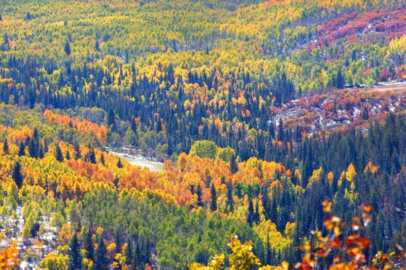 Ohio-Durchlauf in Colorado lizenzfreies stockfoto