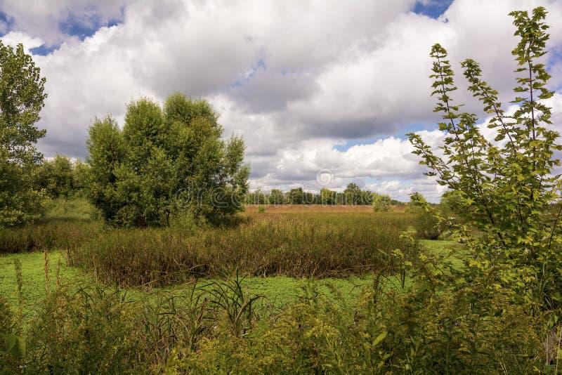 Ohio-Grasland stockfotografie