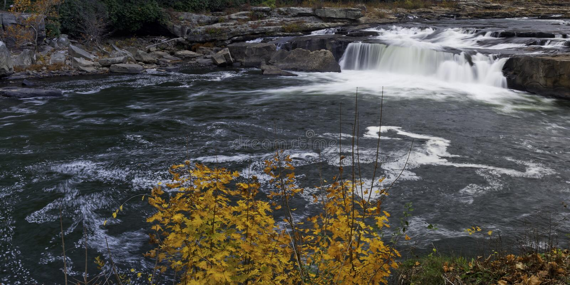 Ohiopyle国家公园 免版税库存照片