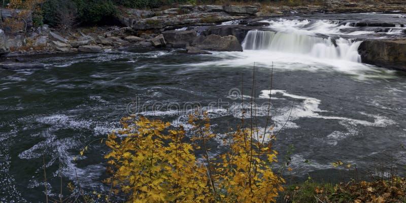 Ohiopyle State Park royalty free stock photos