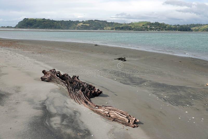 Ohiwa od Ohope plaży w Whakatane, Nowa Zelandia zdjęcie royalty free