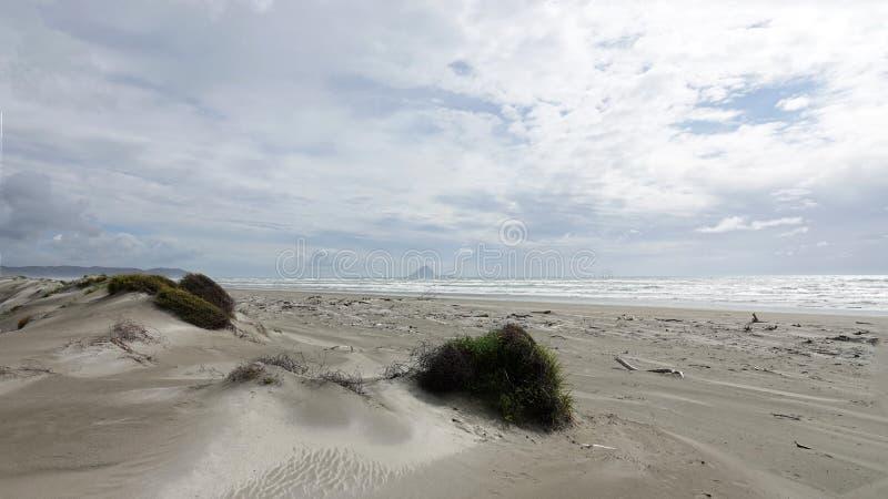 Ohope plaża w Whakatane, Nowa Zelandia zdjęcia stock
