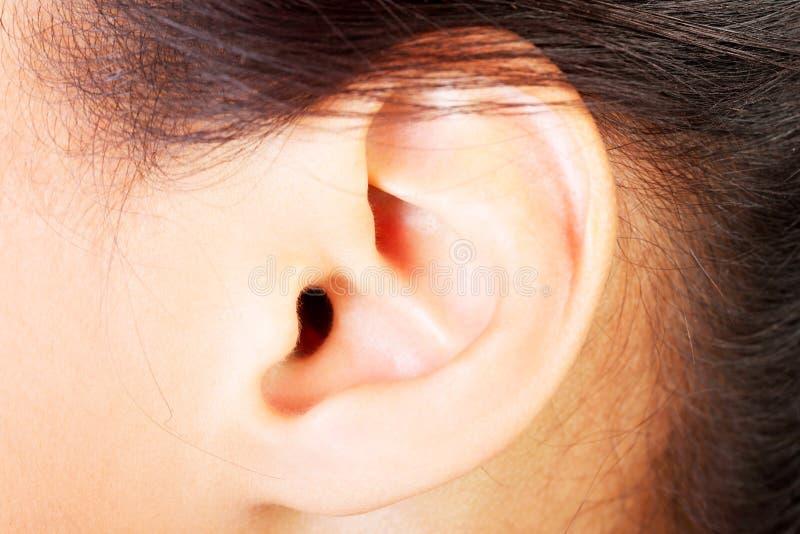 Ohr der jungen Frau stockbild