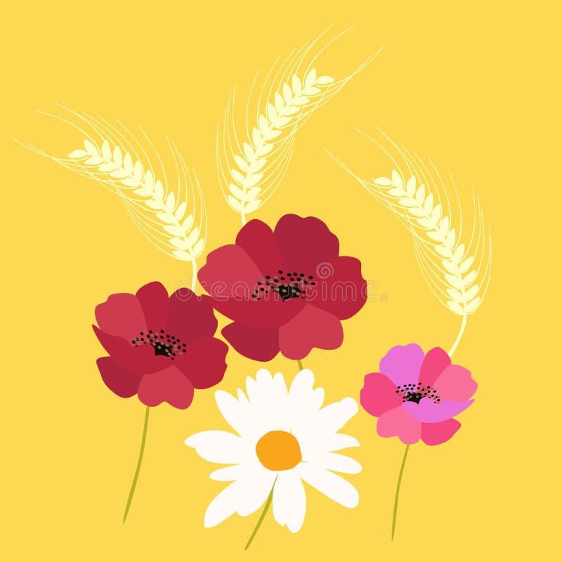 Ohren von den Weizen-, Mohnblumen- und Gänseblümchenblumen lokalisiert auf gelbem Hintergrund Blumen und Insekt Quadratische Kart stock abbildung