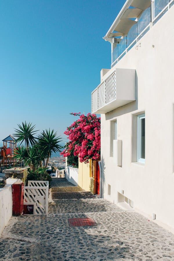 Oia grodzka ulica w Santorini wyspie, Grecja zdjęcie stock