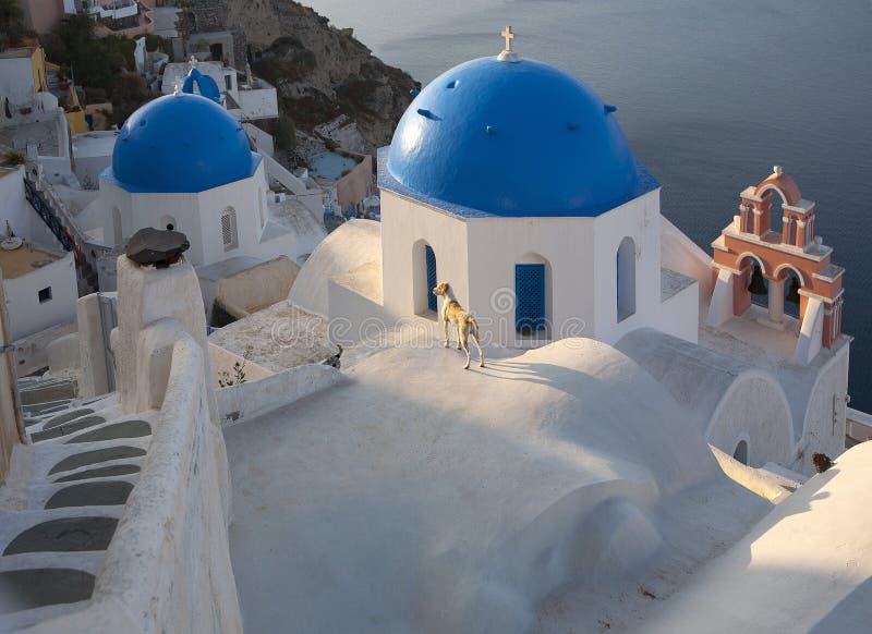 Oia Santorini photos libres de droits