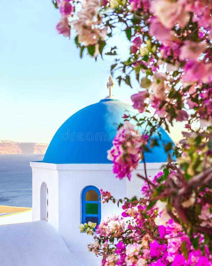 Oia, traditional greek village of Santorini with blue dome of churches with purple flowers, Greece royalty free stock photography