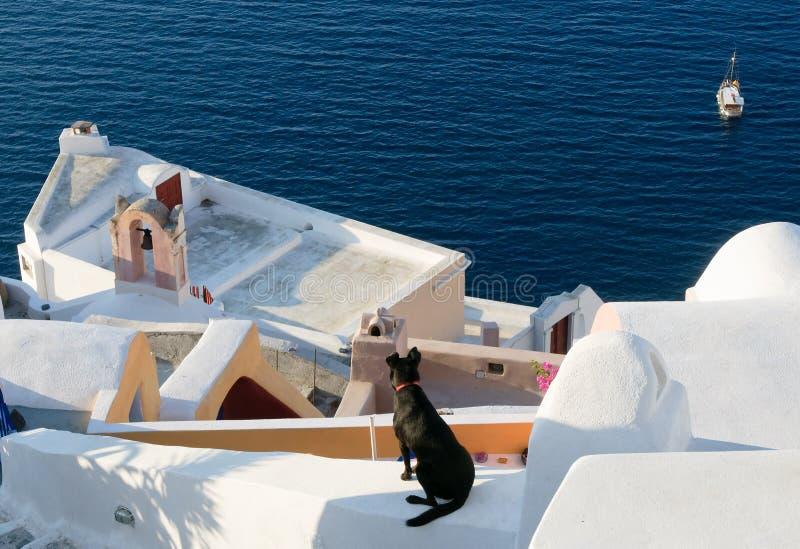 Download Oia Village At Santorini Island, Greece Stock Image - Image: 14852357