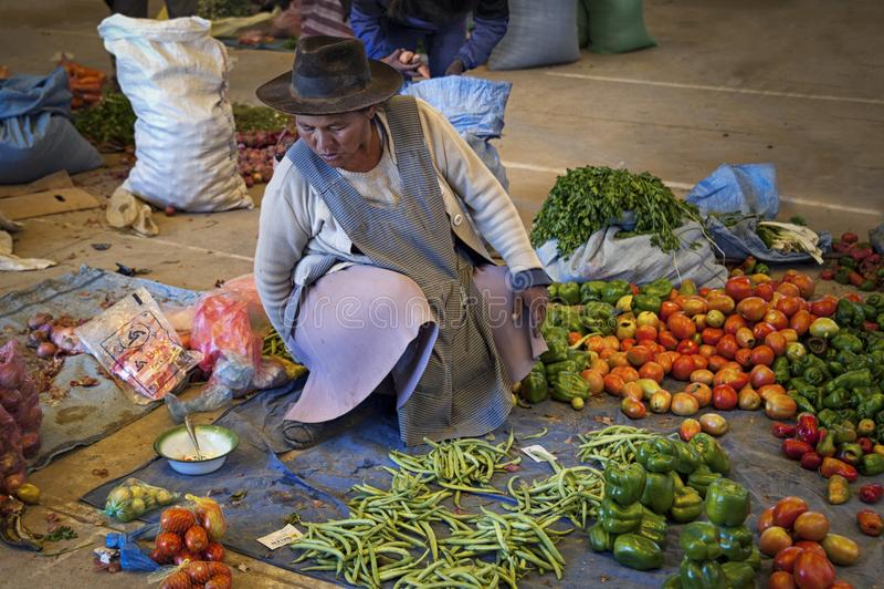 Oidentifierad infödd infödd Quechua kvinna med den traditionella stam- kläder och hatten, på den Tarabuco söndag marknaden, Boliv royaltyfria bilder