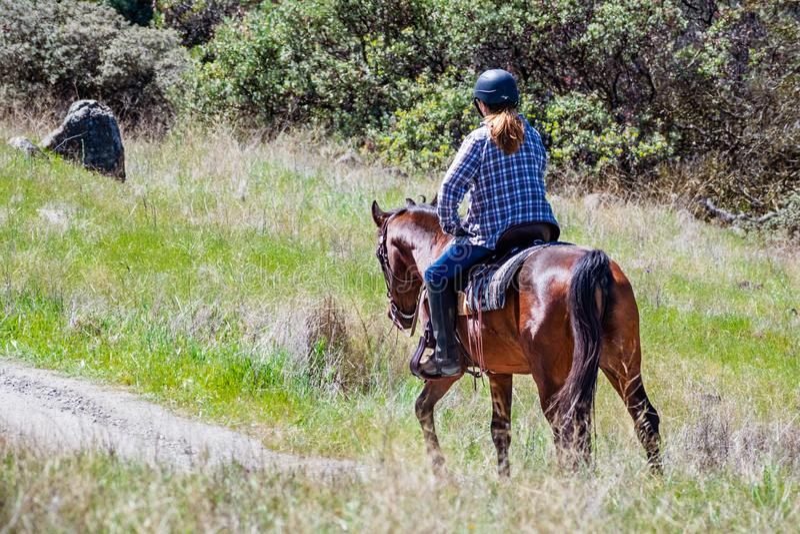 Oidentifierad kvinna som rider en häst på kullarna av södra San Francisco Bay område, Santa Clara County, San Jose, Kaliforni arkivbild