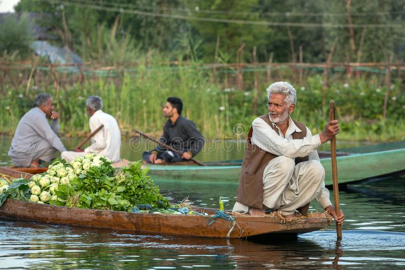 Oidentifierade grönsaksäljare som tidigt på morgonen tar deras jordbruksprodukter till den sväva marknaden på Dal Lake i Srinagar arkivfoton
