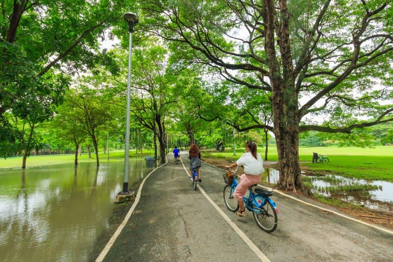 Oidentifierade män och kvinnor som cyklar och går i Vachirabenjatusen, parkerar, eller drevet parkerar i Bangkok Thailand arkivbild
