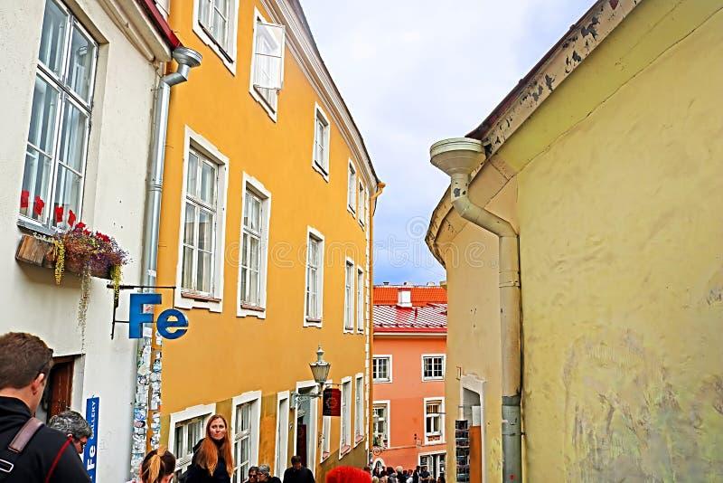 Oidentifierat folk på den korta bengatan i gammal stad av Tallinn, Estland arkivfoto